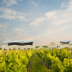 Mikrosvín Winery
